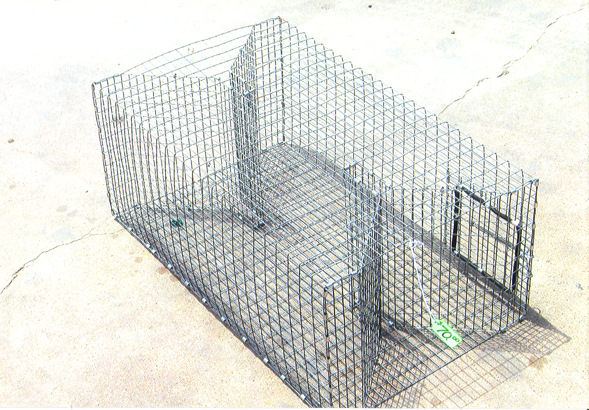 Perch traps for Homemade fish traps